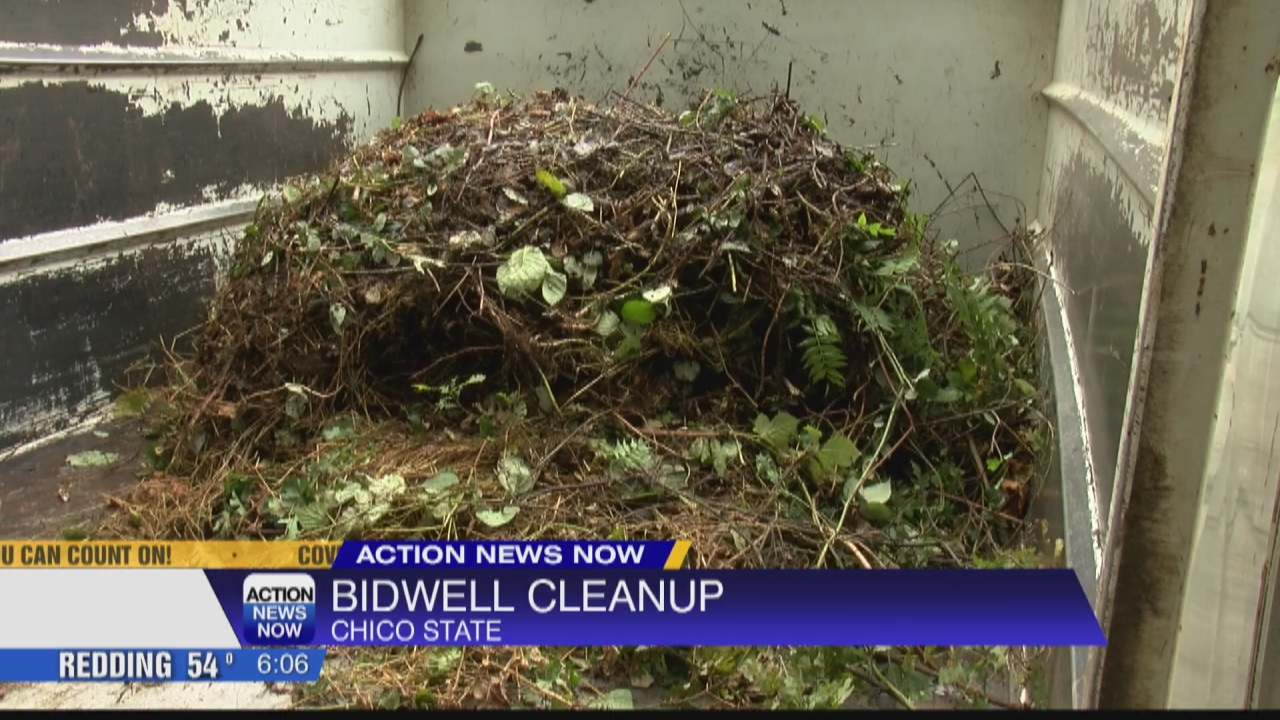 Image for Local organizations team up for Lower Bidwell cleanup