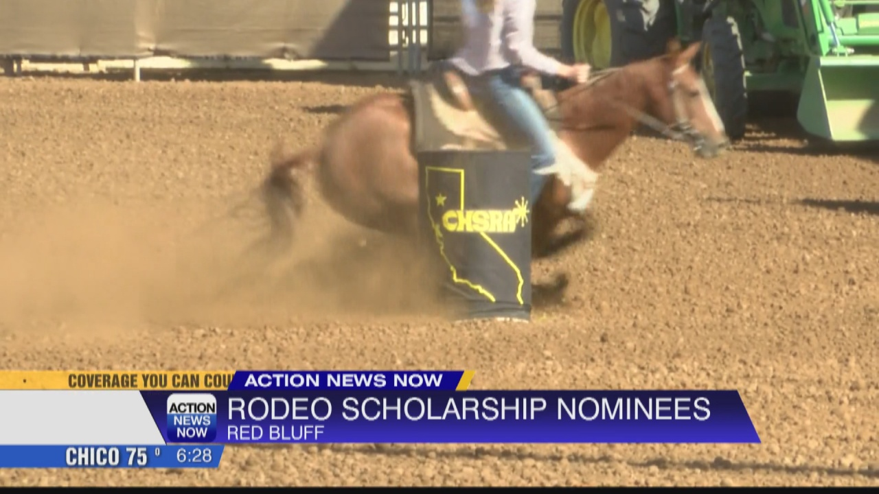 Image for CHSRA District 1 rodeo scholarship nominations Oct. 9