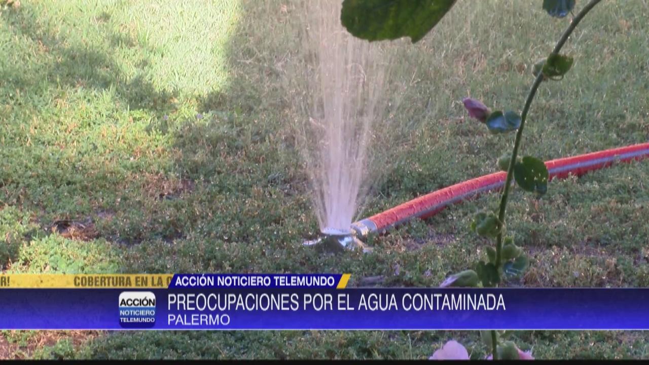 Image for Buscan solución para agua limpia en Palermo