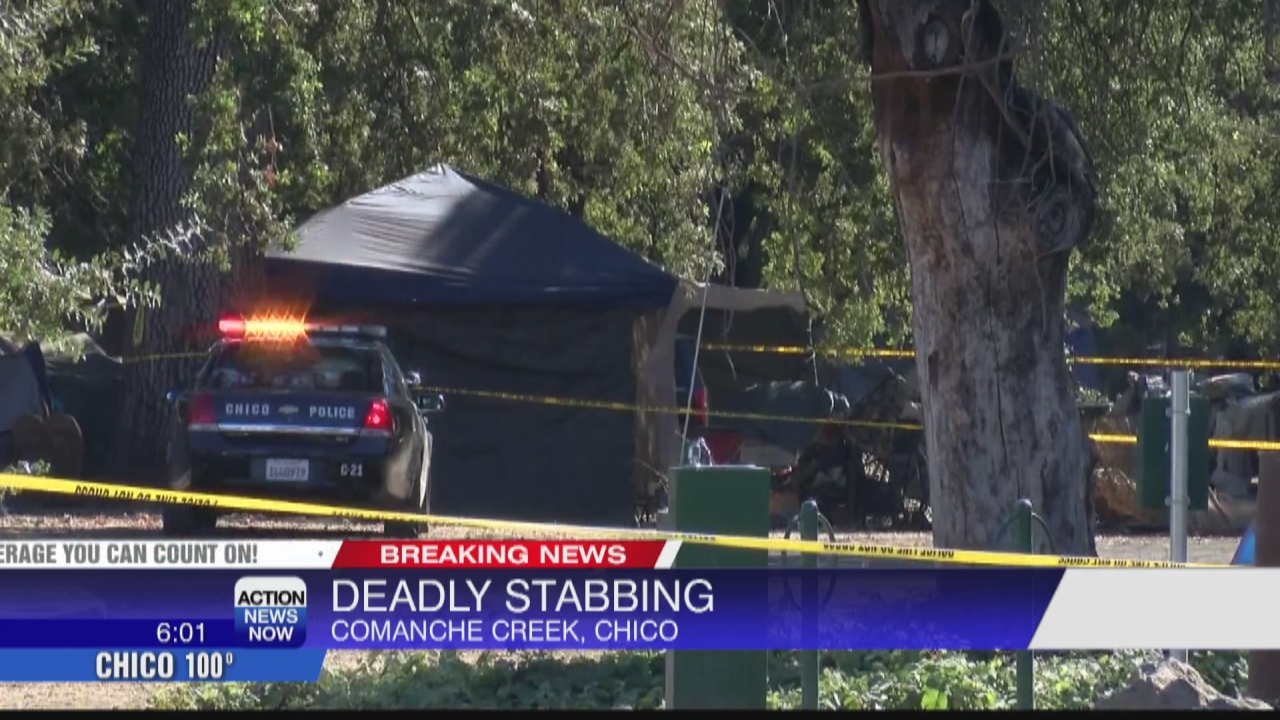 Image for 1 dead after stabbing at Comanche Creek in Chico; 1 person detained