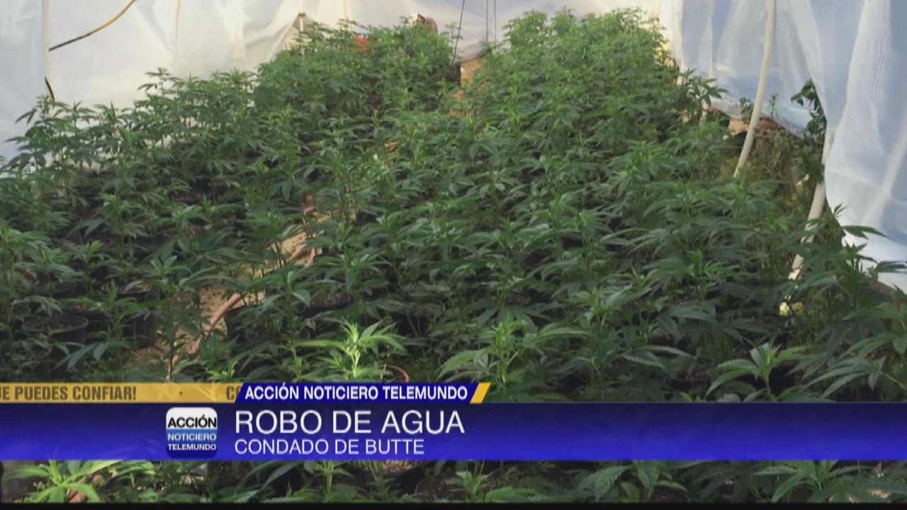 Image for Aumenta el robo de agua en el condado de Butte