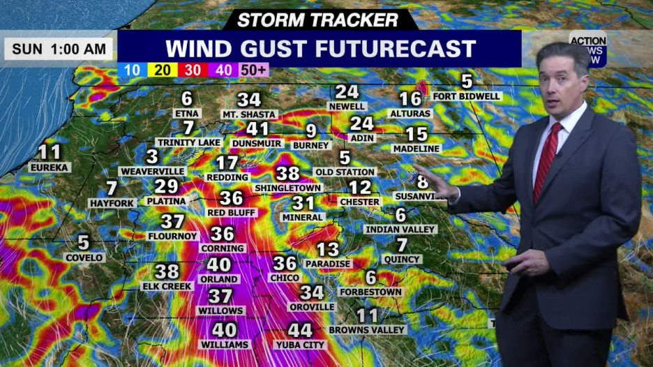 Image for Storm Tracker Forecast - Very High Fire Danger Through Monday