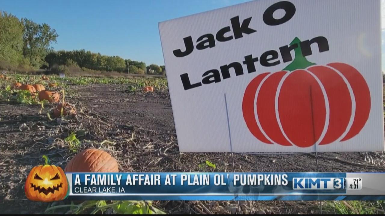 Image for A family affair at Plain Ol' Pumpkins
