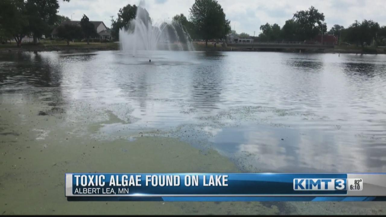 Image for Toxic algae blooms in Fountain Lake in Albert Lea