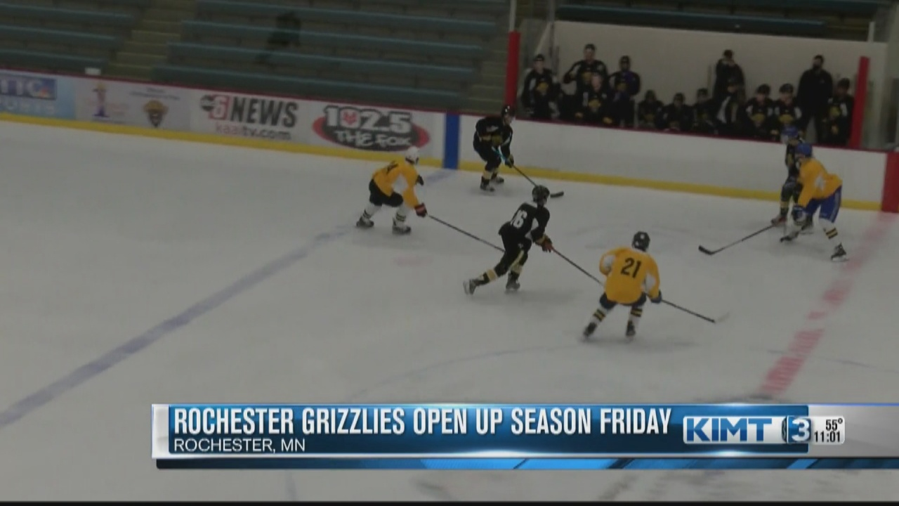 Image for The Rochester Grizzlies are hoping for a different ending this season