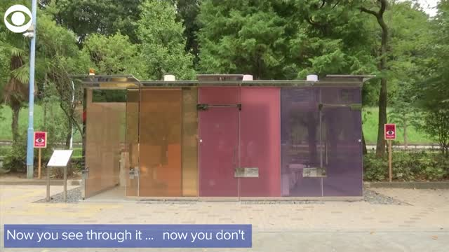 Would You Use It? Japan Has See-Through Public Restrooms