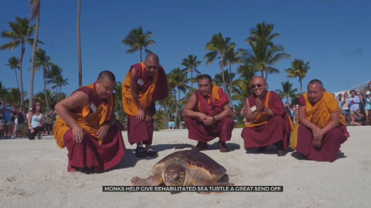 WATCH: Tibetan Monks Help Release Sea Turtle