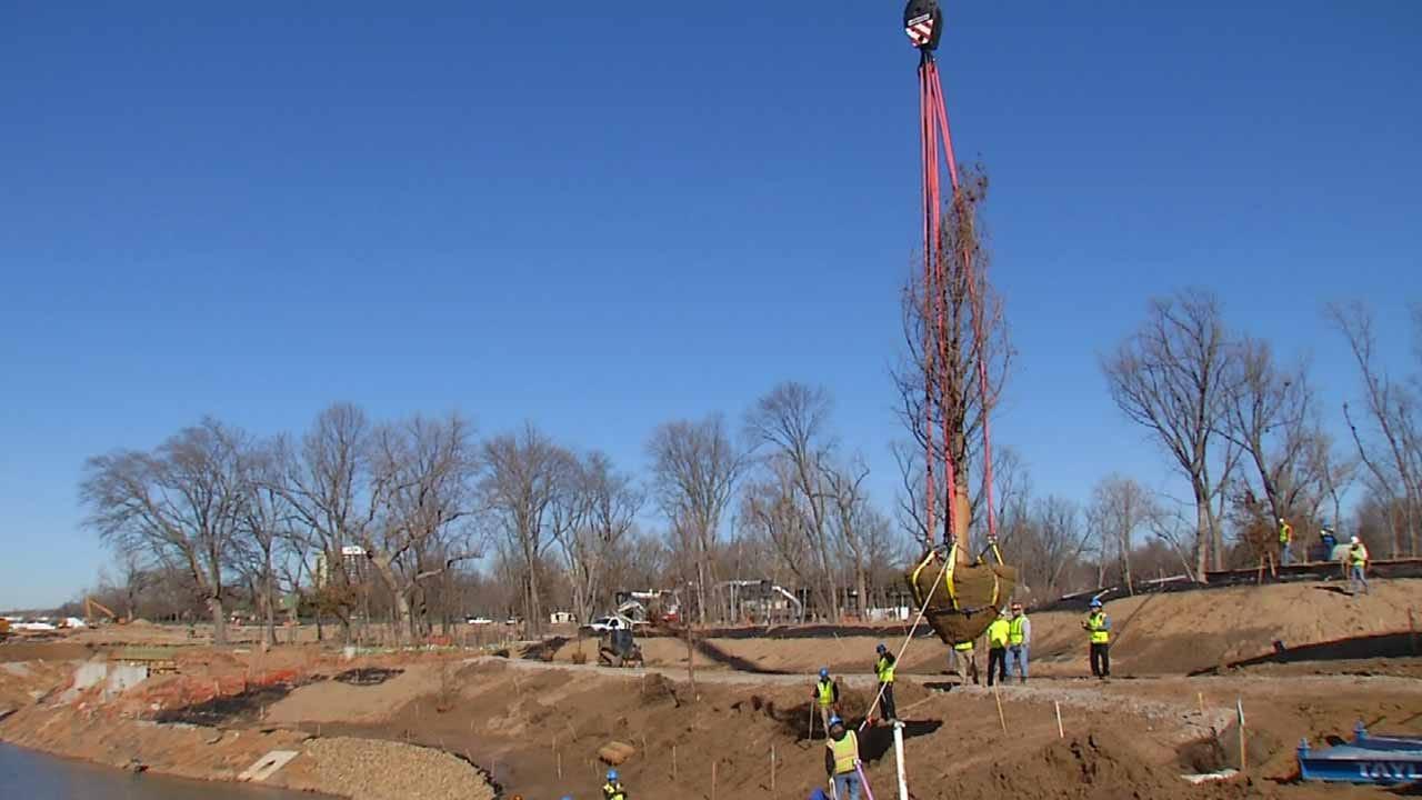 Tree Instillation Marks Beginning Of Landscape Work At Gathering Place