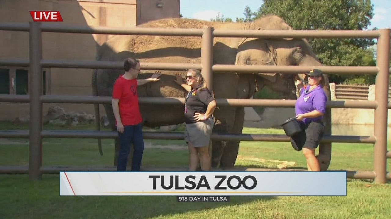 Mayor G.T. Bynum Visits Tulsa Zoo For 918-Day