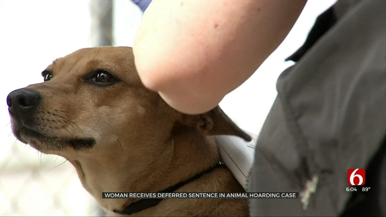 Tulsa Dog Trainer Gets Probation In Animal Cruelty Case