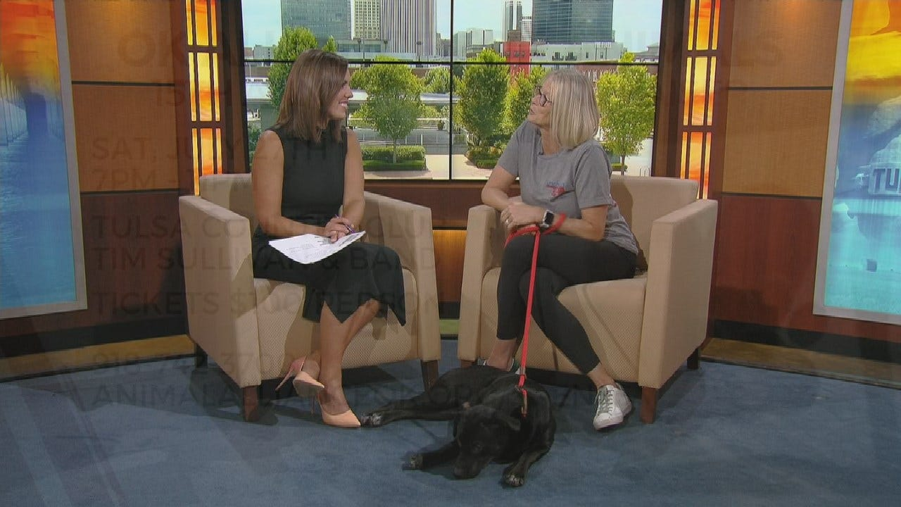 Oklahoma Alliance For Animals Prepares For 15th Anniversary Concert Fundraiser
