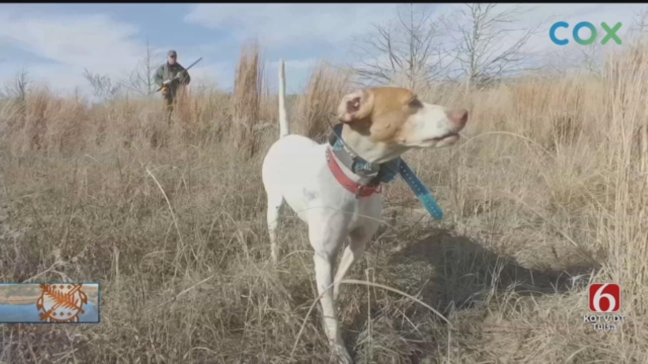 Foundation Committed To Preserving Oklahoma Wildlife
