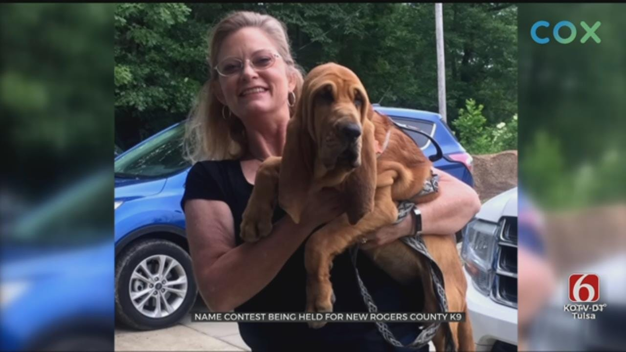 Rogers Co. Sheriff's Office Needs Name For New K-9