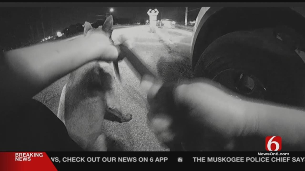 Body Cam Video Released In Tulsa Arrests