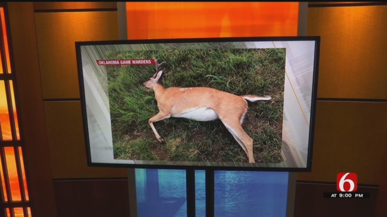Oklahoma Game Wardens Looking For Deer Poacher