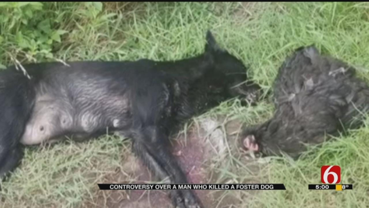 Mayes County Man Shoots Dog To 'Protect Livestock', Spurring Controversy