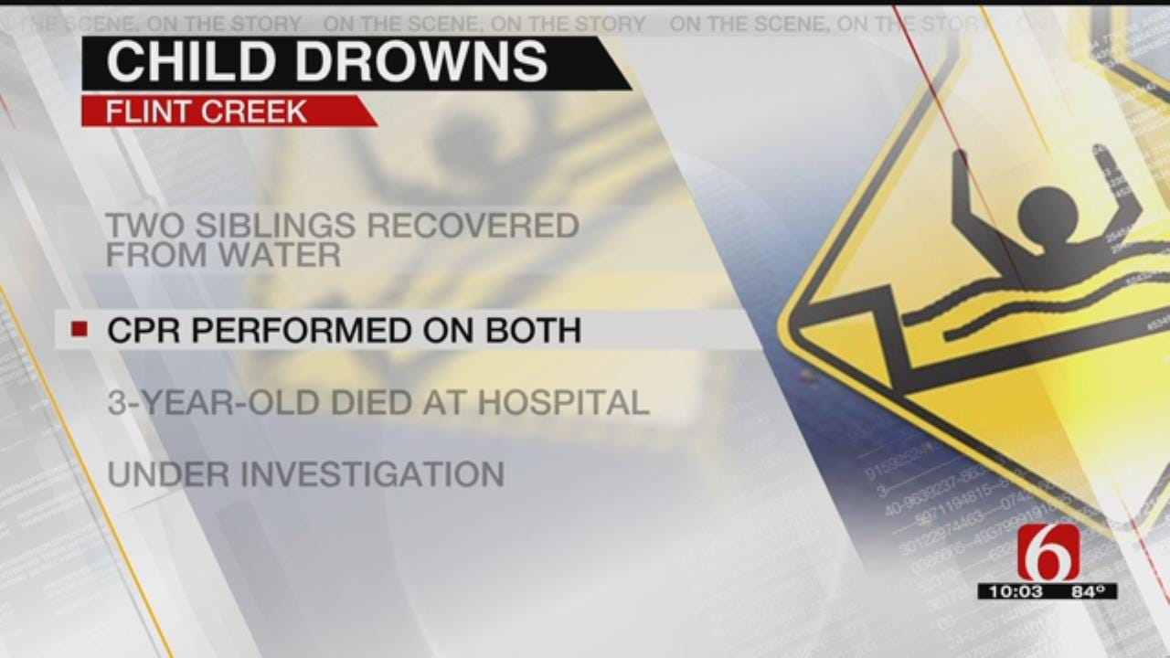 3-Year-Old Child Drowns In Delaware County