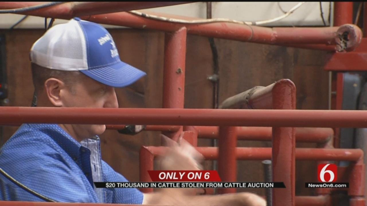 Thieves Steal About $20K Worth Of Cattle In Adair County