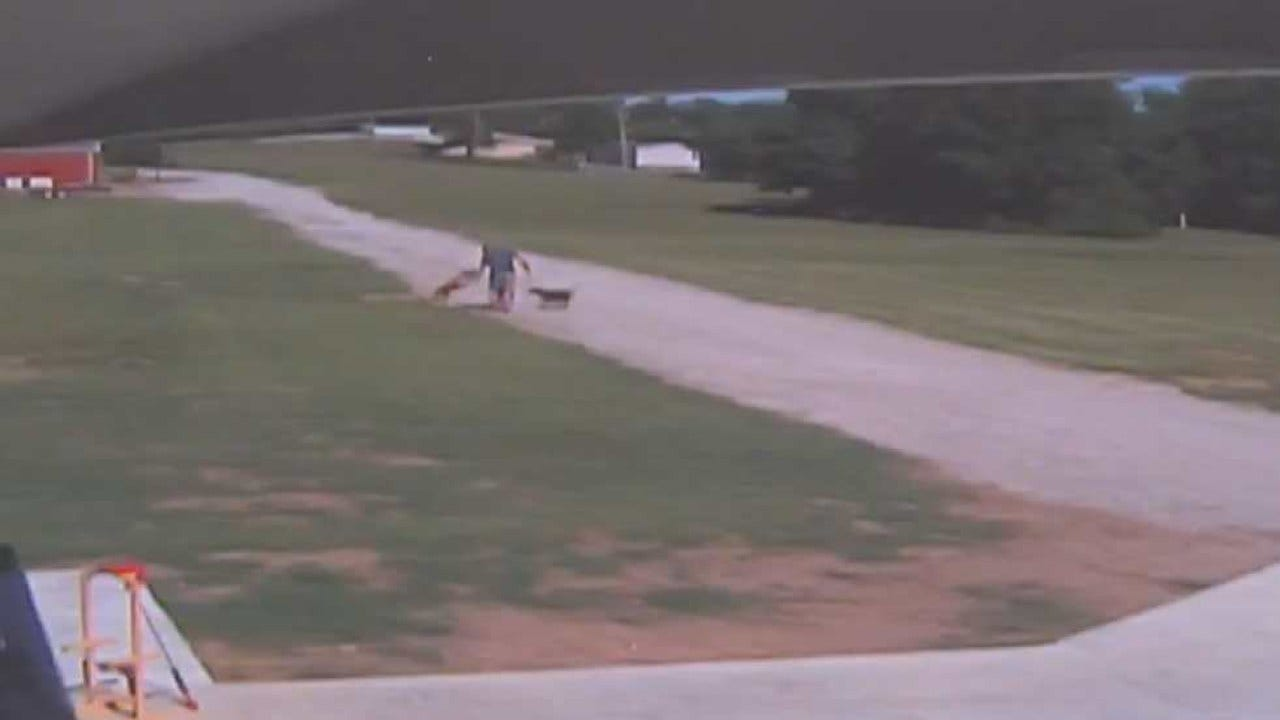 Dog Attack In Creek County Caught On Camera