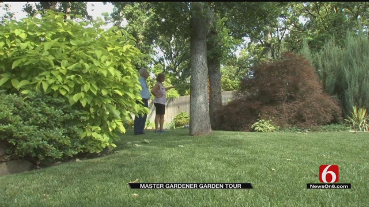 Tulsa Master Gardner Shows Off 110-Year-Old Family Plant