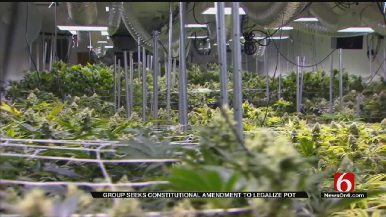 Group Collecting Signatures To Legalize Recreational Marijuana