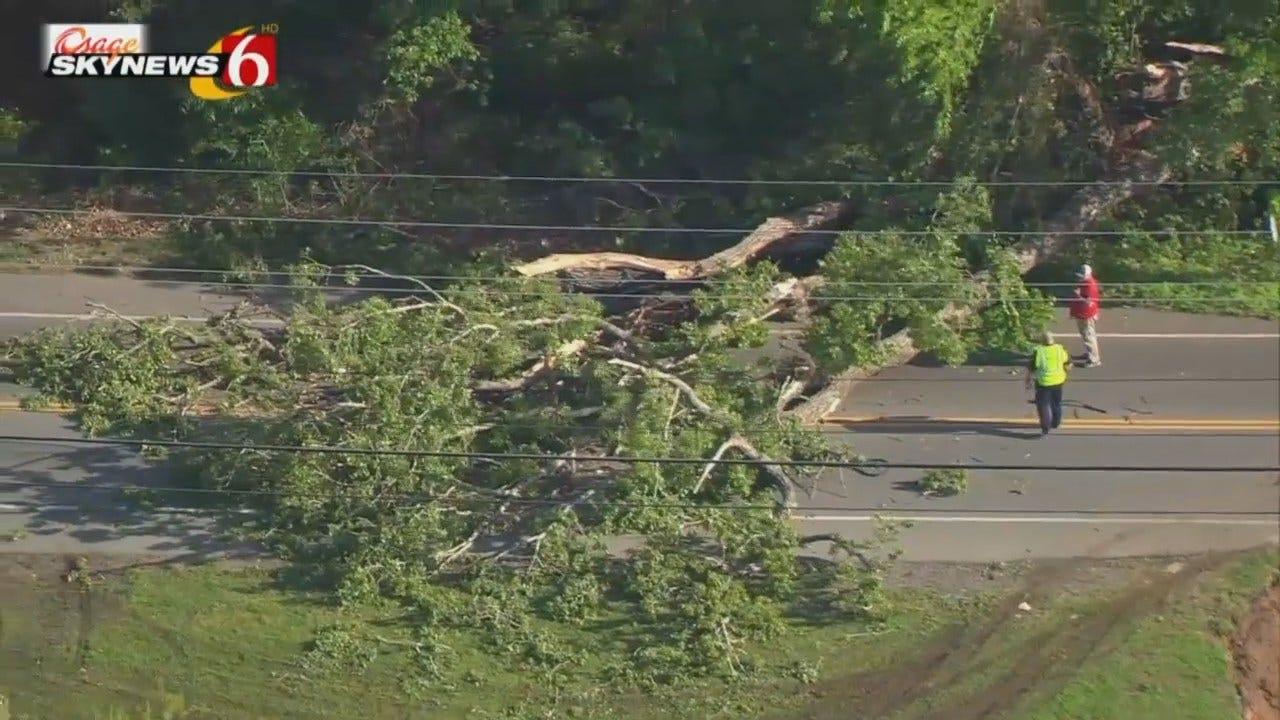 WEB EXTRA: Osage SkyNews 6 HD Video Of Fallen Tree
