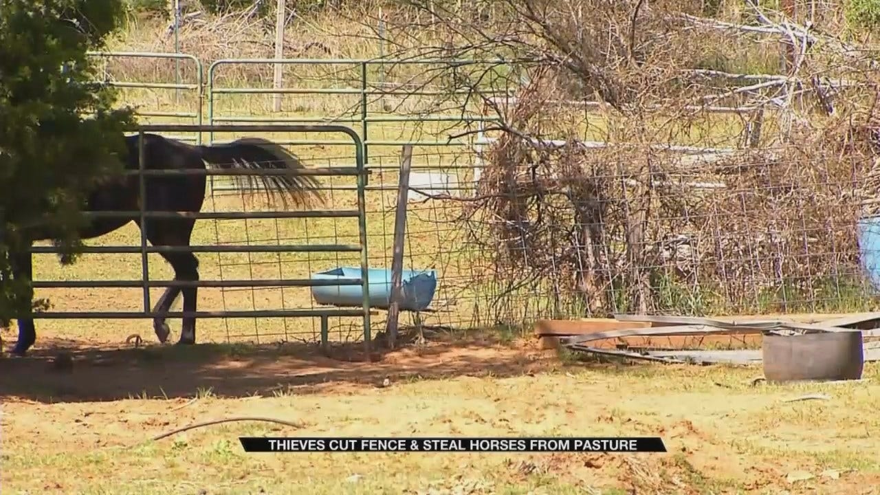 Oklahoma City Police Search For Horse Thieves