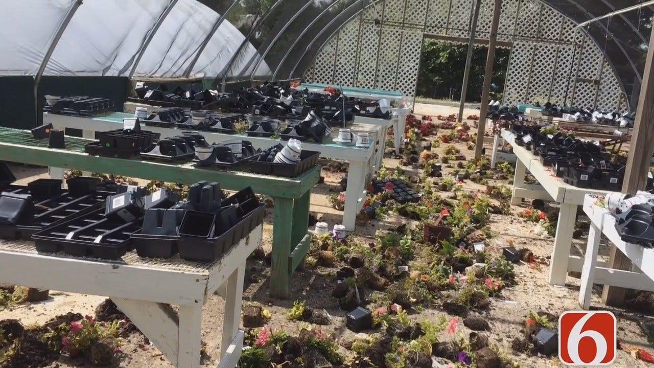 Katiera Winfrey Says Vandals Damage A New Leaf's Retail Garden Center