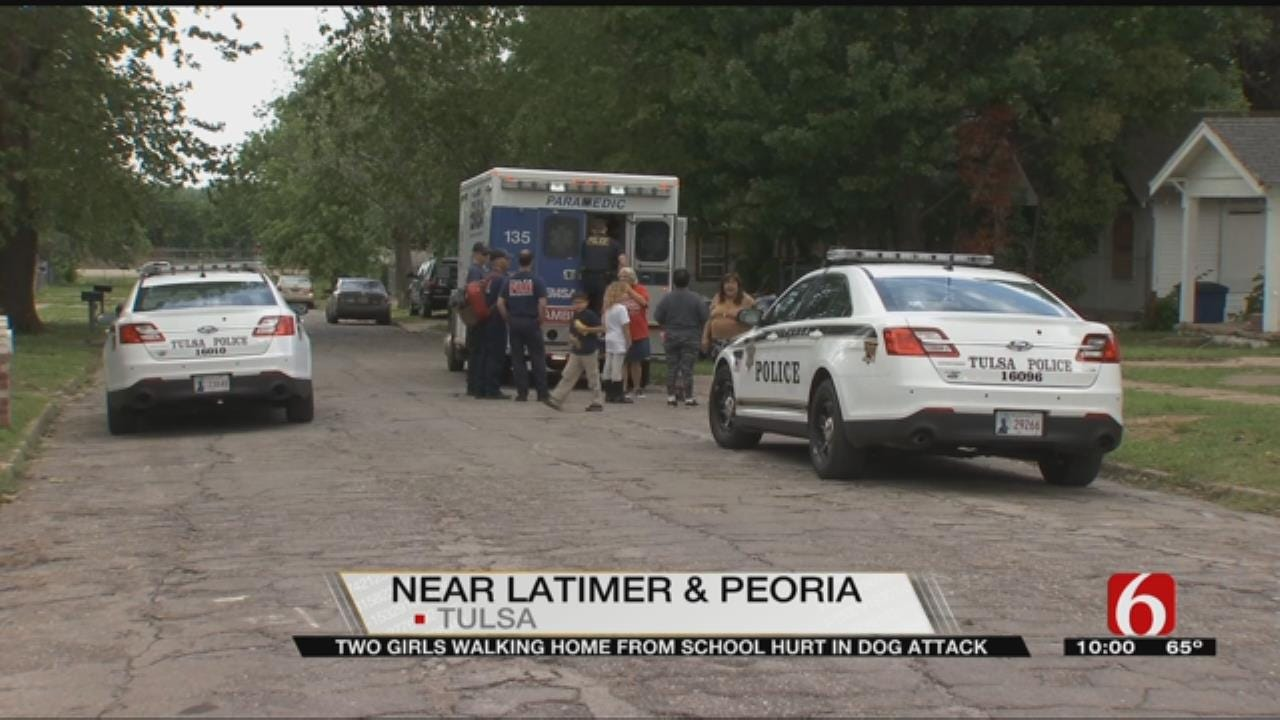 Two Tulsa Children Taken To Hospital After Dog Attack