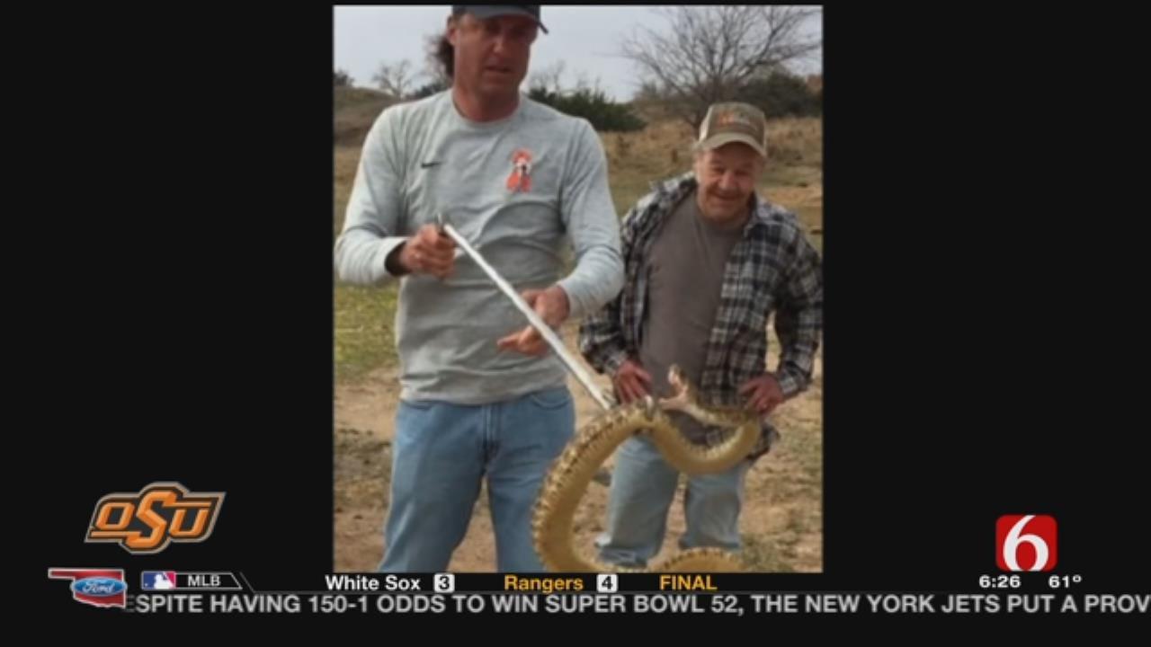 Gundy Talks Rattlesnakes During Wednesday's Media Session