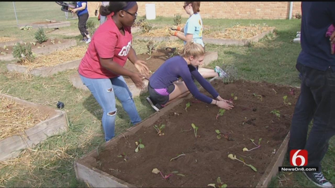 Volunteers, Tulsa Students Create Garden To Help Bees And Butterflies
