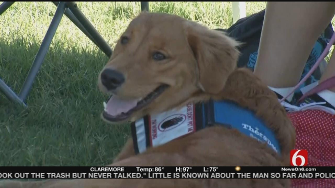 'Clear The Shelters' Pet Adoption Event Underway Across Oklahoma