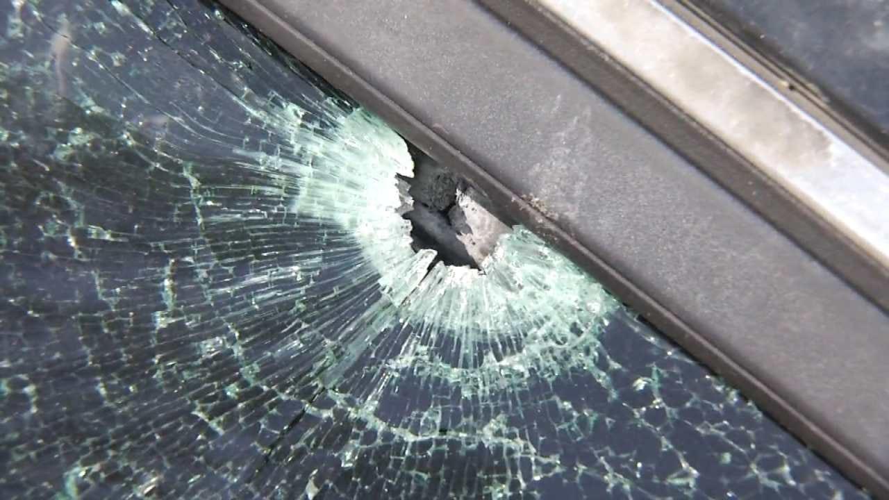 Michael Blair: Man Driving With Dog When Car Gets Shot