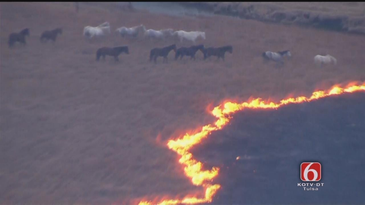 WATCH NOW: Wild Horses Escape Osage County Grass Fire