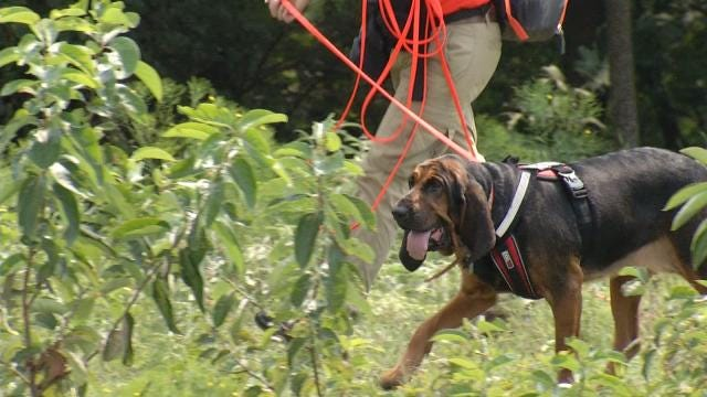 Rogers County Deputies Tune Up Rescue Skills