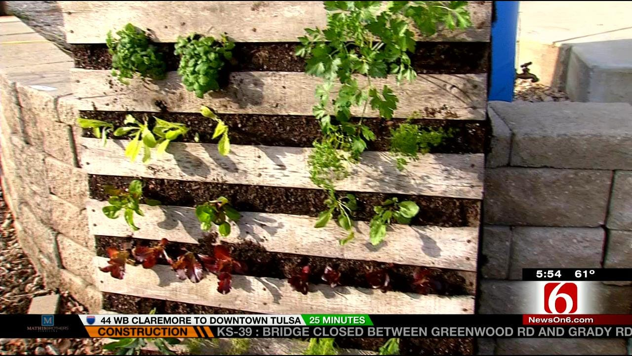 Tulsa Business Teaching Local Gardeners About Hydroponics