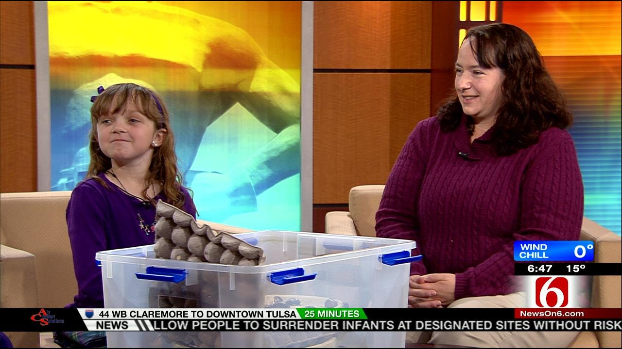 8 Year Old Cockroach Expert Becomes Internet Sensation