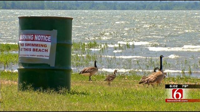 Grand Lake Swimming Area Remains Closed