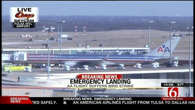 American Airlines Flight Leaving Tulsa Strikes Bird, Returns To TIA