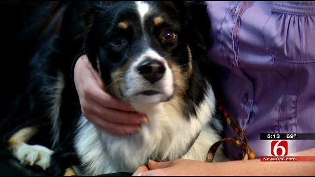 Service Dog Serves As Alarm Clock For Oklahoma Woman