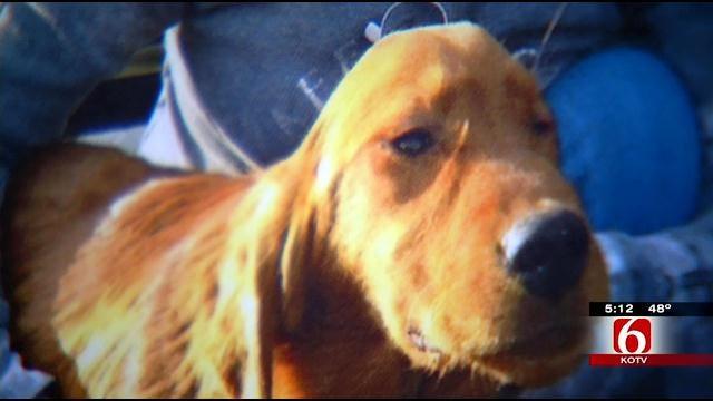 Tulsa Woman Raising Money For Lifesaving Dog