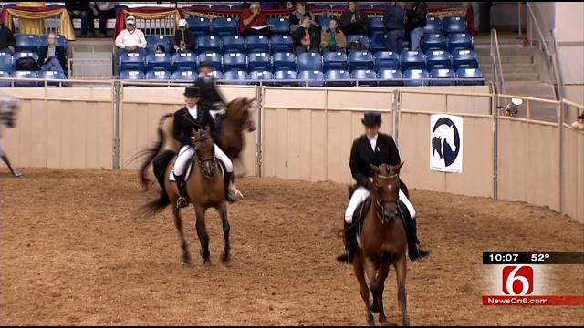 Thieves Target Arabian Horse Trainers During National Championships In Tulsa