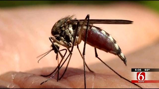 West Nile Virus Claims First Life Of 2013 In Oklahoma County