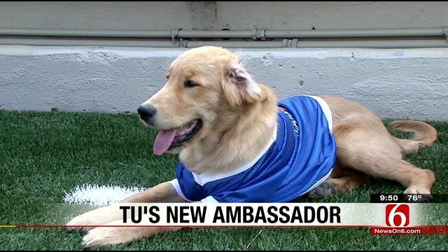 TU Introduces New Football Ambassador