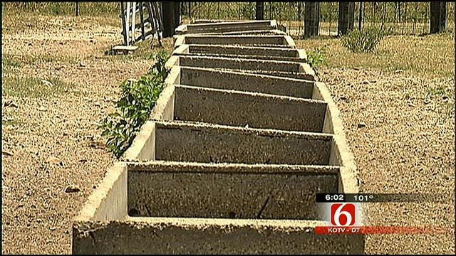 Farmers, Ranchers In Southeast Oklahoma Struggle Through Drought
