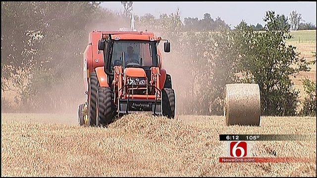 Heat Forces Ranchers To Take Drastic Action
