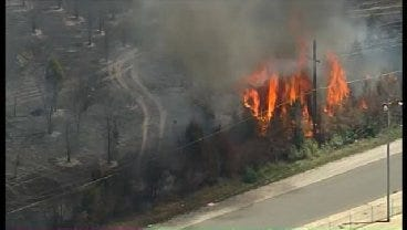 WEB EXTRA: SkyNews6 Catches Several Trees On Fire Near Frankhoma Road