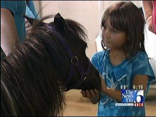 Pinto World Championship Horse Show Rides Into Tulsa