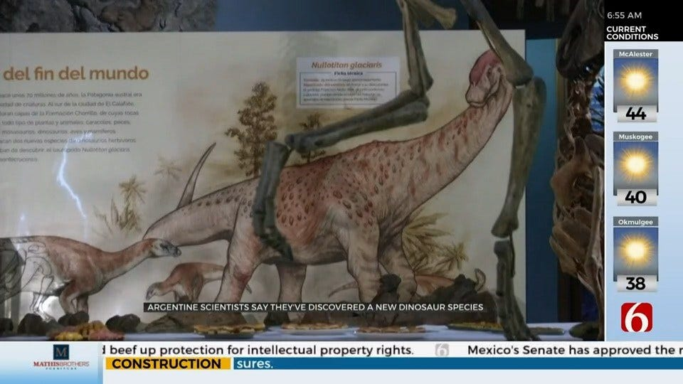 2 New Dinosaur Species Discovered In Argentina