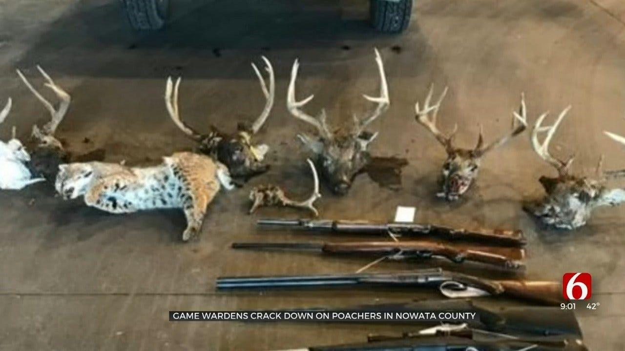 2 Nowata Co. Men Accused Of Poaching Several Deer